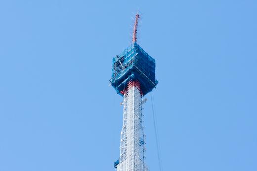 サクラと東京タワーとサンマ ...