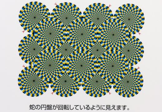 20111120-17.jpg