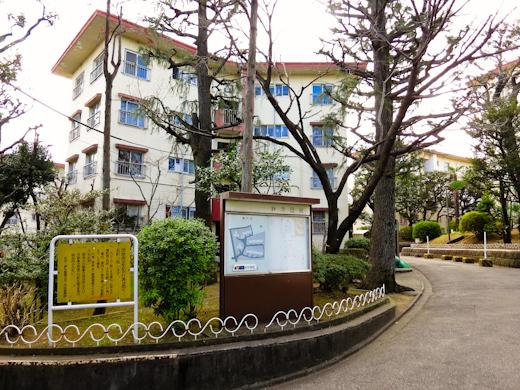 20120114-01.jpg